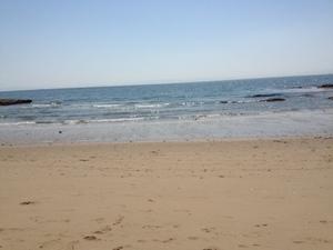 野間の海.JPG