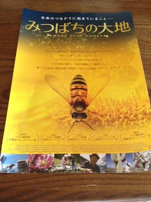 ミツバチの大地.JPG