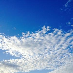 朝の空9月17日.JPGのサムネイル画像